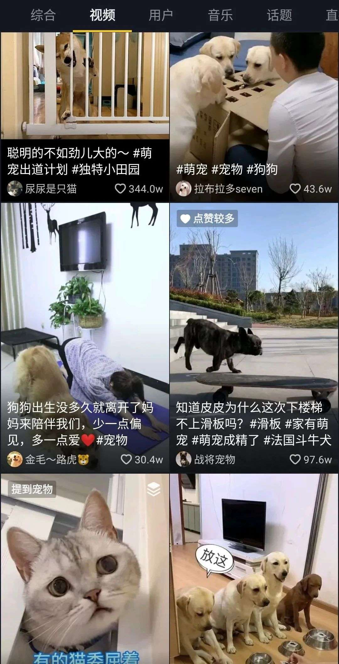 """每5秒一场宠物直播,萌宠短视频催生新经济""""养活""""铲屎官"""