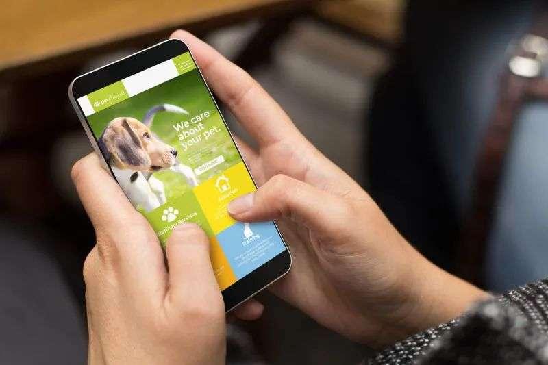 波奇宠物拟赴美上市:七成收入来自第三方平台,仍未走出亏损困境
